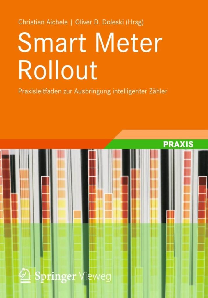Smart Meter Rollout - Praxisleitfaden zur Ausbringung intelligenter Zähler